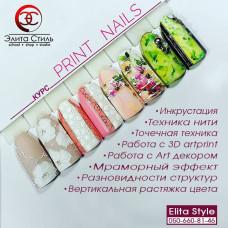 "Курс ""Print-Nails"""
